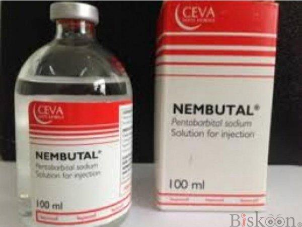 top quality Diazepam,Tramadol, DMT, Wax,Xanax,LSD,Buprenorphine,Dormicum,Bromazepam,LSD Vials,shrooms etc