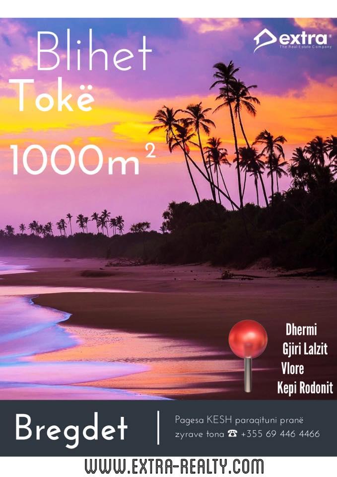 Blihet 1000m Tok ne Bregdet