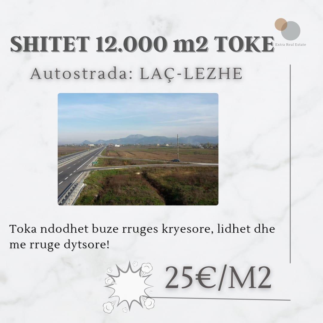 Shitet 12000m2 Toke