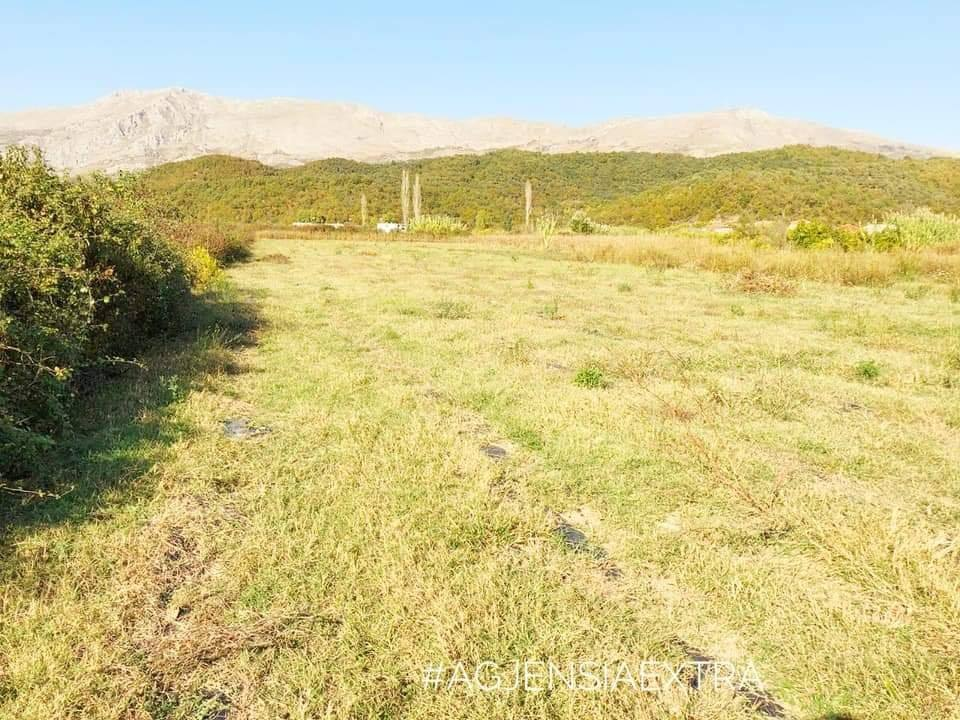 Shitet toke buke (arë) e ndodhur ne Oblike Shkoder Vetem 9km nga qyteti Shkodres.